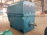 motore a corrente alternata Trifase ad alta tensione di raffreddamento Air-Air di serie di 6kv/10kv Ykk Ykk6302-12-500kw