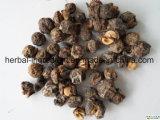 Fabrik Phyllanthus Emblica der Gerbsäure-30% Auszug