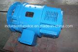 Motore senza spazzola elettrico di CC di alta coppia di torsione diretta della fabbrica