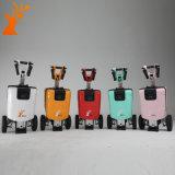 Fournisseur en gros dans le scooter électrique de mobilité de pliage sec de tricycle de la Chine