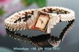 Het bevallige Mooie Horloge van het Kwarts met de Band van de Legering voor Vrouwen Fs569