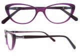 광학 프레임 안경알 새로운 형식 Eyewear 프레임 포도 수확 안경알 프레임
