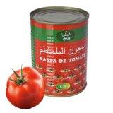pasta de tomate enlatada 400g do puré do tomate