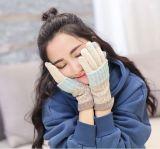 Winter-warme Frauen-starke Screen-Wolle-Handschuh-Dule-Verwenden lange Hülsen-Handschuhe