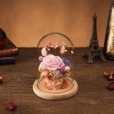 Flor preservada en el vidrio para el regalo de la tarjeta del día de San Valentín