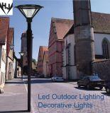 Luz ao ar livre do diodo emissor de luz do projeto da patente com microplaquetas da ESPIGA