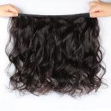 O melhor cabelo 100% humano de venda do Virgin Curly brasileiro