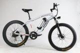 4.0 Grosses Gummireifen-Rad-elektrisches fettes Reifen-Fahrrad