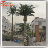 Prezzo competitivo albero di plastica artificiale della palma da datteri dei 6 tester
