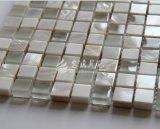 Shell de agua dulce y azulejo de mosaico de mármol y de cristal