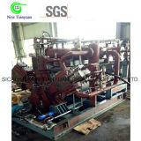 Ce di riempimento del compressore del cilindro del gas naturale di 25MPa CNG certificato