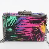 Mesdames de collision de couleur de l'acrylique Art Printing soirée sacs sac à main de l'épaule EB689