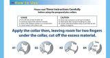 Aceite esencial natural Flea Tick Collar para perro
