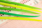 Groene Ballpointen van de Pennen van de Inkt van de Kunst van de bevordering de Fijne