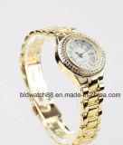 Mulheres de bronze dos relógios de pulso do ouro do OEM com cristais