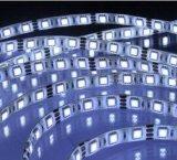 Plastique et polymère 12V RGB Flexible LED Light Strip avec 5m / Roll