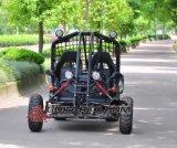 Взрослый большие 60V электрические идут Kart с мотором AC 3000W