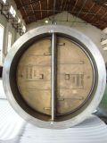 De dubbele Klep van de Controle van het Wafeltje van de Plaat in Kneedbare Iron+C95800