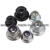 Noix de bride de l'acier inoxydable 304 DIN 6923