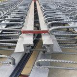 중국 가교작업을%s 모듈 팽창 이음