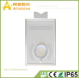 12W 5 Years Warranty All in Solar One Outdoor Road Sensorial Light with PIR