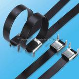 Cinta plástica do aço inoxidável do D-Fechamento do fechamento de 304 anéis com revestido