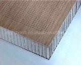 Panneau en aluminium perforé de nid d'abeilles pour le revêtement de mur