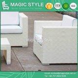[رتّن] أريكة إدماج أريكة محدّد خارجيّ أثاث لازم أريكة محدّد فناء أريكة حديقة أريكة وقت فراغ أريكة