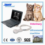獣医のための小型ラップトップの超音波機械