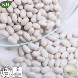 무게 손실 자연적인 백색 신장 콩 추출 1%, 2% Phaseolin