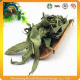 Il tè di erbe ha asciugato il tè dei fogli di Stevia con Steviozid