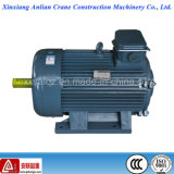 Yz Series WS Electrical 16kw Small Powerful Electric Motor