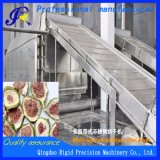 La figura de la máquina de secado de frutos secos cortes de pelo