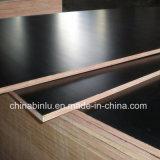 واجه [بروون] أو فيلم سوداء خشب رقائقيّ لأنّ بناء من الصين ممون