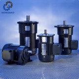 Aluminium-Wechselstrom-Bremsen-Gang-Motor mit Horizonal helles Dury Type_D