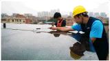 (HM-250P-60-1) Comitato solare cristallino solare di uso 250W del sistema poli