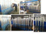 10sp125-6 Pomp Met duikvermogen de van uitstekende kwaliteit van het Water