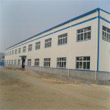 Edificio del taller de la estructura de acero de Professinal con la grúa