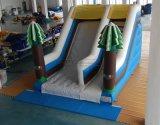 Acclamazione Amusement Snowy Inflatable di tema Slide da vendere
