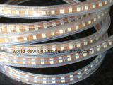 SMD2835 높은 밝은 110V/220V 밧줄 빛 (SMD2835-120)