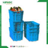 Cassa delle frutta e delle verdure del supermercato senza coperchi