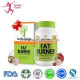 Produto saudável natural da fruta e da planta de OEM/ODM que Slimming reduzindo o peso
