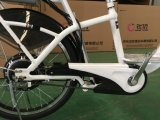 Longyeahの電気モペットのスクーターの大人の電気バイクの長距離