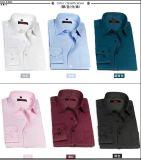 남자의 형식적인 셔츠/남자의 예복용 와이셔츠/남자의 사업 셔츠