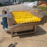 Machine de lavage de nettoyage de balai pour la tomate Apple de raccord en caoutchouc de pomme de terre