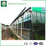 Sunroom de aluminio y casa verde con el vidrio