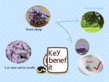 Litera de gato del queso de soja de la calidad en olor de la lavanda con control del grupo y del olor