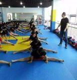 Stuoia di stile di arte marziale del Taekwondo con il certificato del Ce