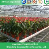 Парники пленки цветка/плодоовощ/полиэтилена овощей растущий с системой навеса