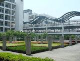 De Bouw van het structurele Staal voor Universitaire & Hoge Gebouwen (10000M2)